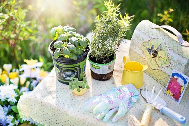 unique ways to garden