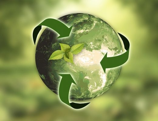 5 Easy Environmentally-Friendly Changes You Can Start Today
