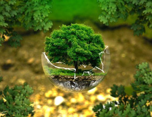Easy Earth Day Ideas
